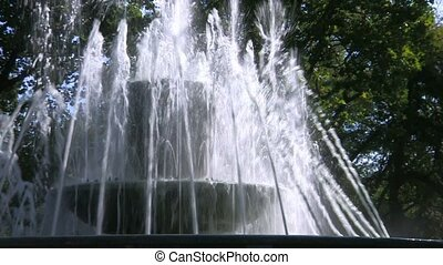 Fountain in park, green trees back