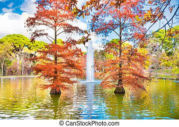 Fountain in park lake