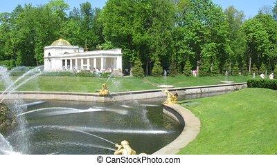fountain in park Petergof in the summer