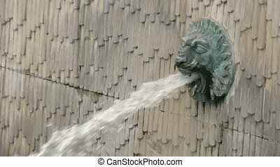 Fountain in the form of a lion's head, slow motion