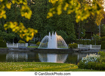 Fountain in the summer Park on the lake