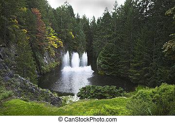 Fountain in wood lake.