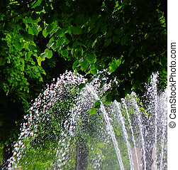 fountain on the background of green leaves