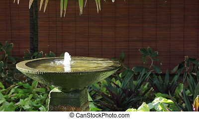 fountain with place for text - fountain in tropical spa with...