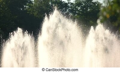Fountains on trees background. Water splashes in motion.