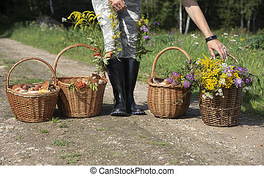 Four baskets of mushrooms and flowers on the forest road.