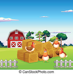 Four chickens in the hay with a barn at the back -...