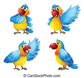 Illustration of four colorful parrots on a white background