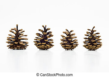Four cones isolated on a white background with a clipping path.