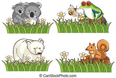 Four different types of animals in garden