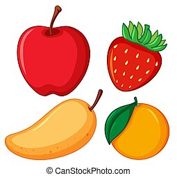 Four different types of fruits on white background