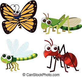 Four different types of insects on white background