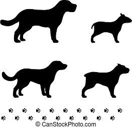 four dog breeds with paw tracks