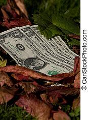 Four dollar bills on a leaf background