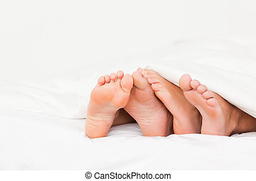 Four feet in a bed against a white background