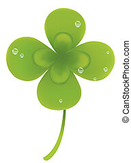 Four leaf and water drop