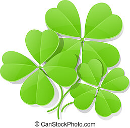 four leaf clover for saint patrick's day - clover four leaf...