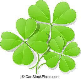 four leaf clover for saint patrick's day
