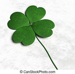Four-leaf clover on the ground - a green four-leaf clover is...