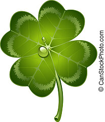 Four-leaf clover over white. EPS 10, AI, JPEG