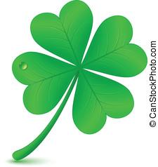 Four leaf clover. St. Patrick's day symbol - Four leaf...