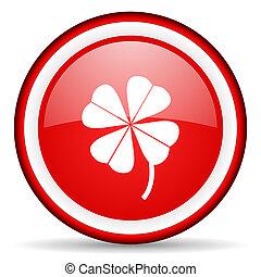 four-leaf clover web icon