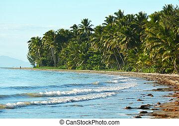 Four Mile Beach in Port Douglas Queensland, Australia.