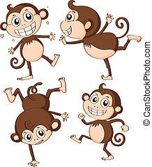 Illustration of four monkeys on a white background
