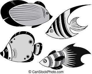 ocean fishes - four ocean fishes