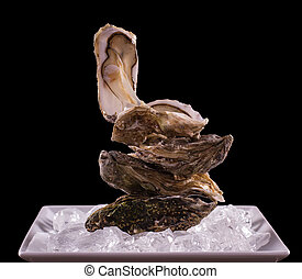 Four oyster shell on ice as balance stack