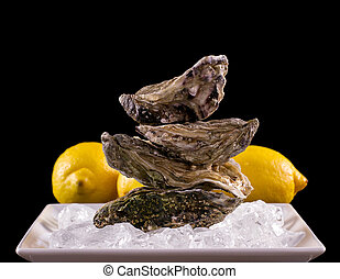 Four oyster shell on ice with lemon as balance stack