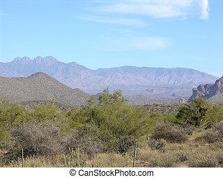 Four Peaks Two - Arizona desert mountains