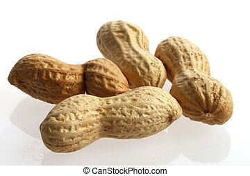 four peanuts on white background