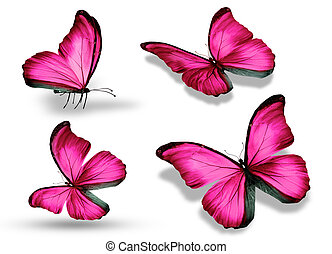 Four pink butterfly