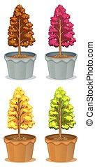Four pots of plants