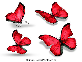 Four red butterfly