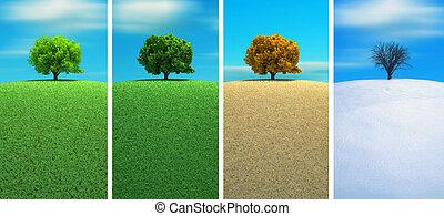 A tree in four seasons - 3d render
