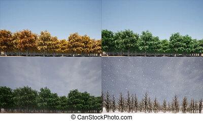 Four seasons landscape Nature concept 4k