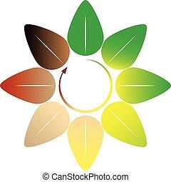 Four seasons - leaf circle - vector illustration
