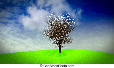 Tree on a grassy hill going through the fours seasons - spring, summer, autumn, winter