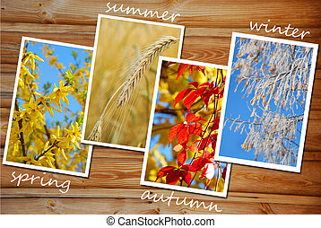 four seasons of the year images collection