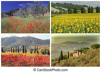 four seasons collage with spectacular tuscan landscape...