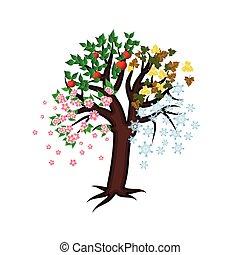 Four seasons tree, vector