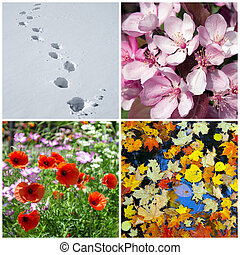 Four seasons. Winter, spring, summer, autumn.