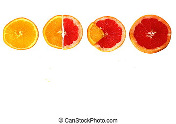 Four slices of orange and grapefruit