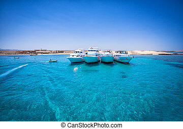 speed boats in tropical sea