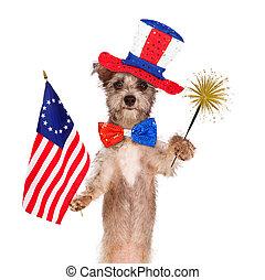 Fourth of July Celebration Dog - Dog wearing Independence...