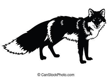 fox black white - standing fox, side view black and white ...