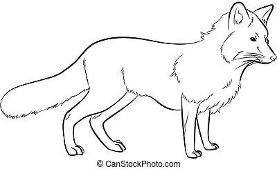 Fox Drawing Vector Illustration