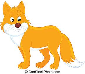 Fox, fox cub, cub, fox pup, wild dog, vixen, tod, male fox,...
